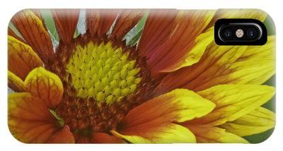 IPhone Case featuring the photograph Gaillardia Flower by Richard J Thompson