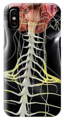 Internal Organs Phone Cases