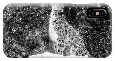 Snow Leopard iPhone Cases