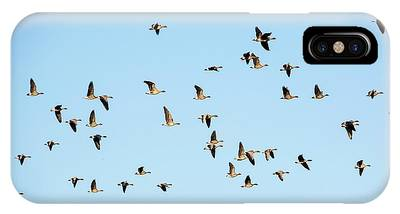 Gaggle Phone Cases