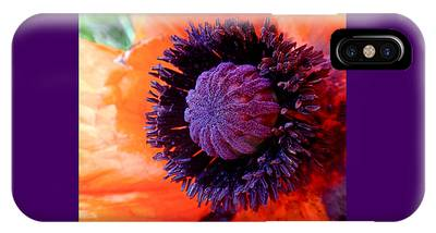 IPhone Case featuring the photograph Poppy by Rona Black