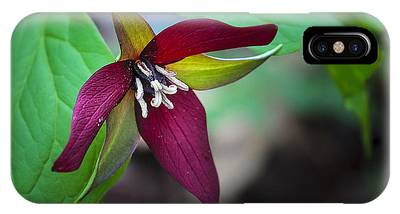 Red Trillium IPhone Case
