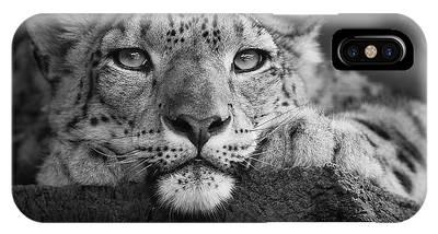 Snow Leopard Phone Cases