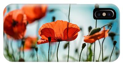 Red Flower iPhone Cases