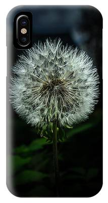 IPhone Case featuring the photograph Dandelion by Michael Goyberg