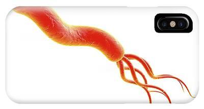 Helicobacter Pylori iPhone Cases