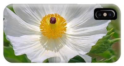 Poppy Perfection  IPhone Case