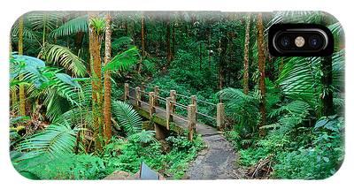 Tropical Rain Forest In San Juan IPhone Case