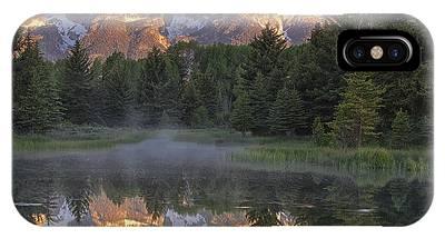 Wilderness Phone Cases