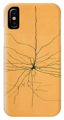 Cajal Phone Cases