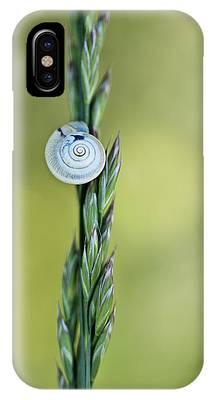 Snail Phone Cases