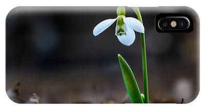 IPhone Case featuring the photograph Snowdrop Flower by Michael Goyberg