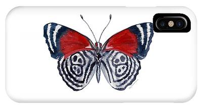 37 Diathria Clymena Butterfly IPhone Case