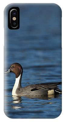 Canada, British Columbia, Westham Phone Case by Rick A Brown