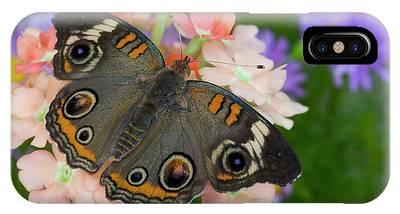 Buckeye Butterfly Phone Cases