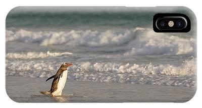 Islas Malvinas Phone Cases