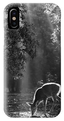 Bambi Phone Cases