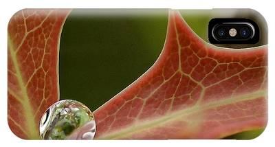 Agarita's Jewel IPhone Case