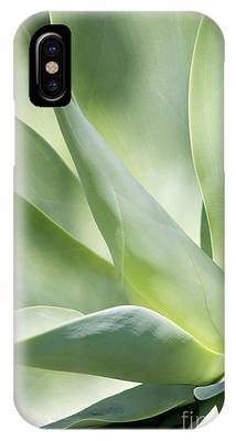 IPhone Case featuring the photograph Agave Plant 2 by Richard J Thompson