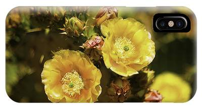 IPhone Case featuring the photograph 'albispina' Cactus #3 by Richard J Thompson