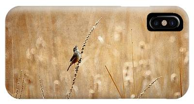 All Rejoicing IPhone Case