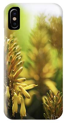IPhone Case featuring the photograph Aloe 'kujo' Plant by Richard J Thompson