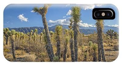 Antelope Valley Joshua Trees 1 IPhone Case