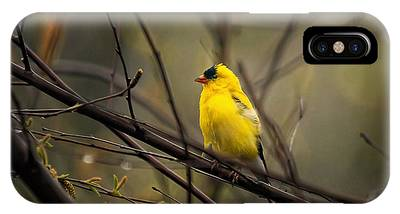 April Showers In Square Format IPhone Case