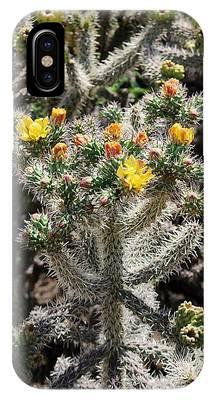 Arizona Cactus IPhone Case