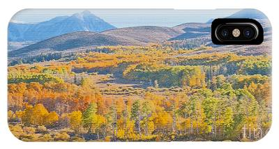Aspen Grove Mosaic  IPhone Case