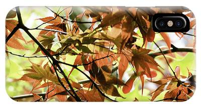 IPhone Case featuring the photograph Autumn Leaves by Richard J Thompson