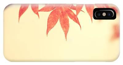Beautiful Fall IPhone Case