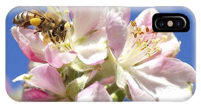 Bee Thankful IPhone Case