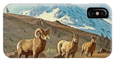 Bighorn Sheep Phone Cases