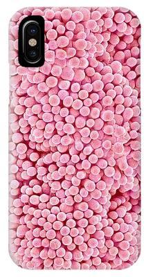 Pistil Phone Cases