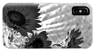 Black And White Flower Of The Sun IPhone Case