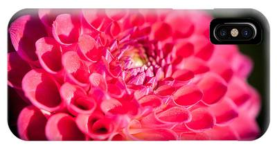 Blooming Red Flower IPhone Case