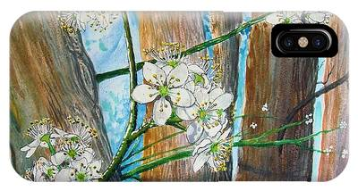 Blooms Of The Cleaveland Pear IPhone Case