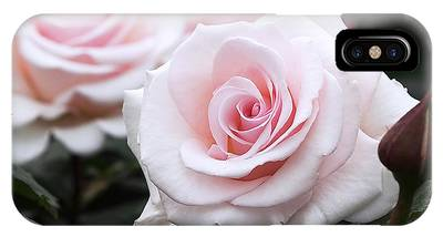 IPhone Case featuring the photograph Blush Pink Roses by Rona Black