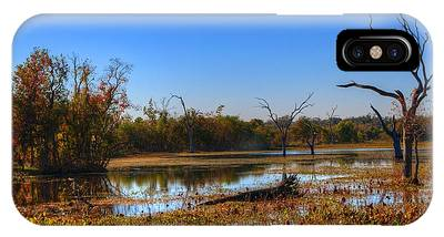 Brazos Bend State Park Phone Cases