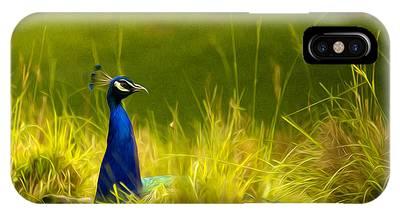 Bronx Zoo Peacock IPhone Case