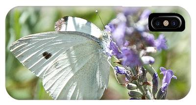 Cabbage White On Lavender  IPhone Case