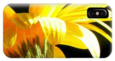 Canopy Of Petals IPhone Case