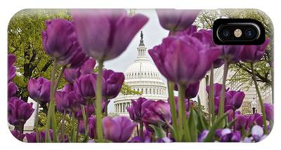 Capitol With Tulips IPhone Case