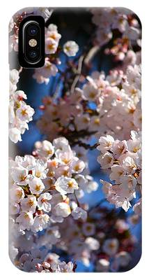 Cherry Blossoms And Blue Sky-2 IPhone Case
