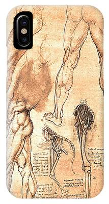 Comparative Anatomy Phone Cases