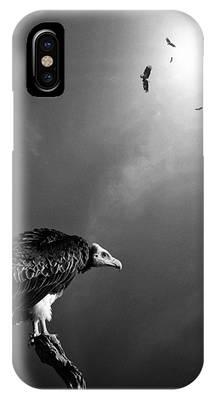 Avian Phone Cases