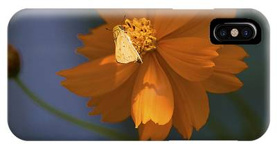 IPhone Case featuring the photograph Coreopsis by Richard J Thompson