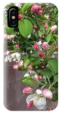 Crabapple Blossoms And Wall IPhone Case