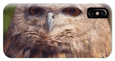 Ornithology Phone Cases